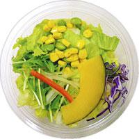 12品目が摂れる1/2日分の野菜サラダ